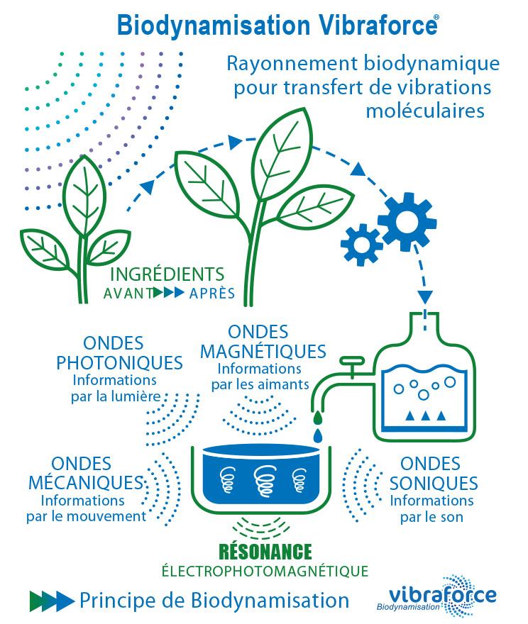 Schéma-Biodynamisation-Vibraforce---Principe-vulgarisateur-2019